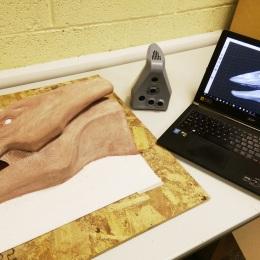 Serpent Sulpture 3D Scan