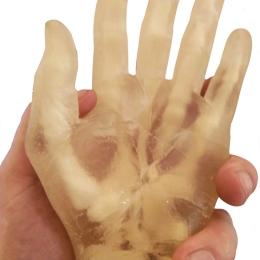 3D Printed Hand with Bones