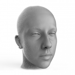 3D Scan Head Mesh