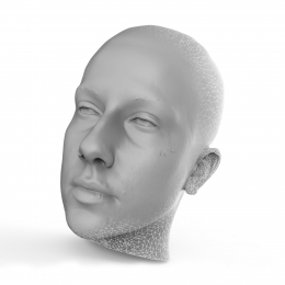 Polygon Mesh from 3D Scan
