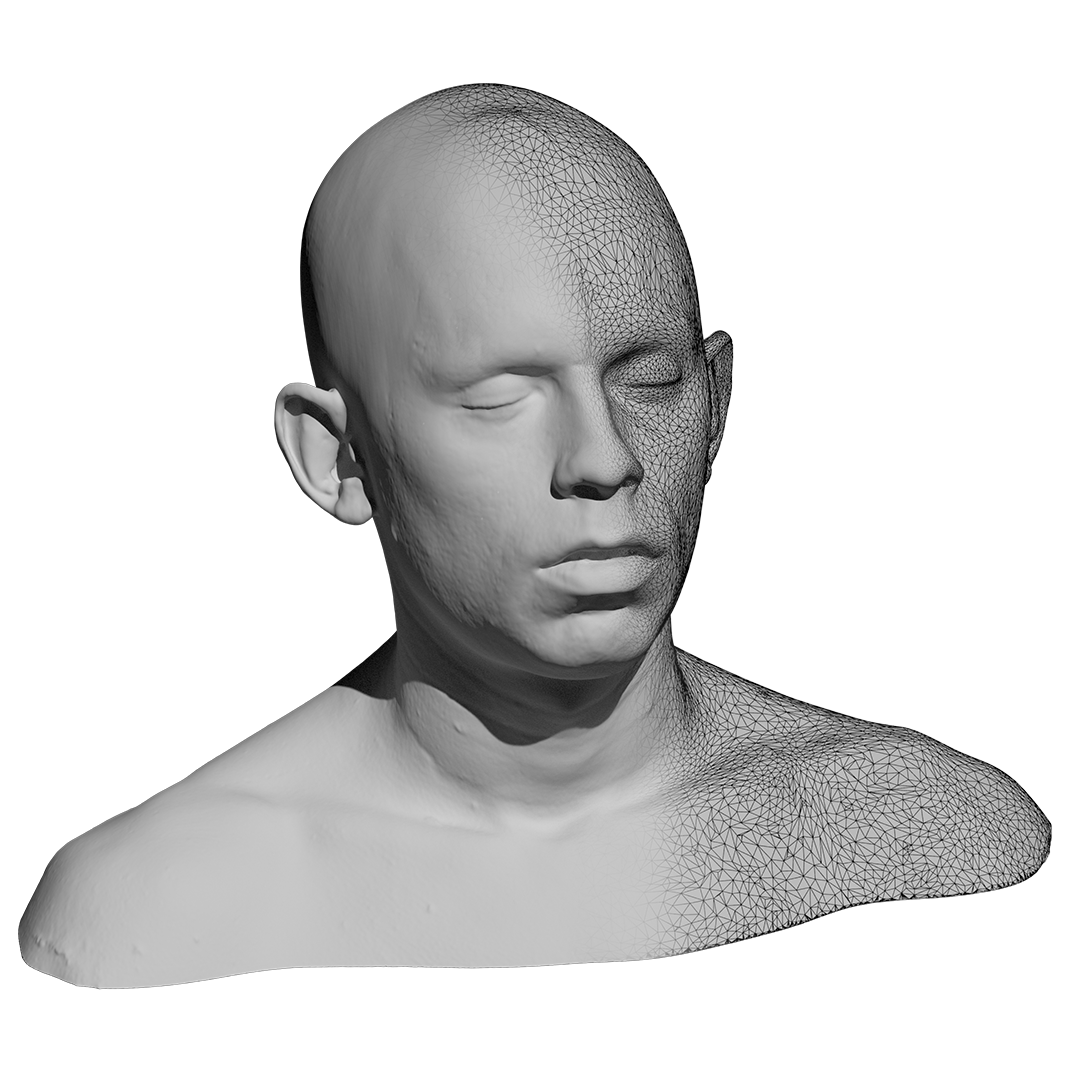 Fast High Resolution 3D Scan of Person's Face and Shoulders Bust